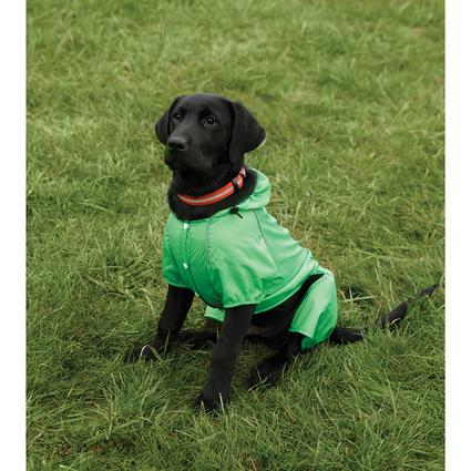 Green Rain Slicker, Small