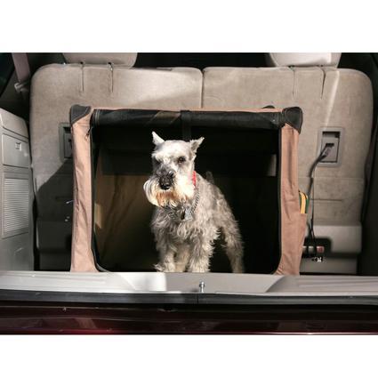 Dog Digs - Medium