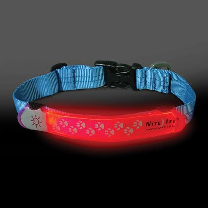 Nite Dawg Collar Cover