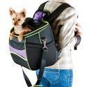 Comfy Go Backpack Pet Carrier