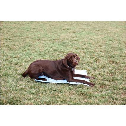 Pet Cooling Mat, 24